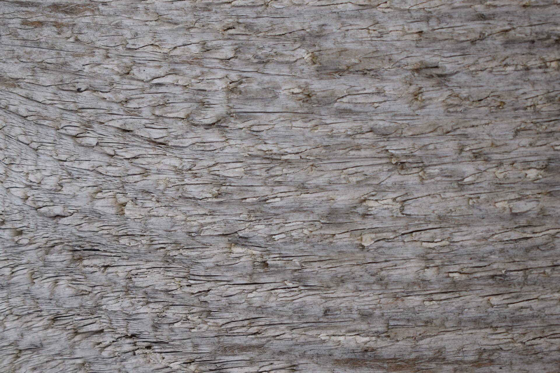 Ferestre lemn BIO-ALU ETERN