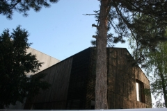 placare-lemn